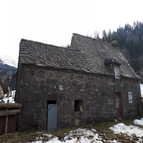 Offres de vente Maison Le Falgoux 15380