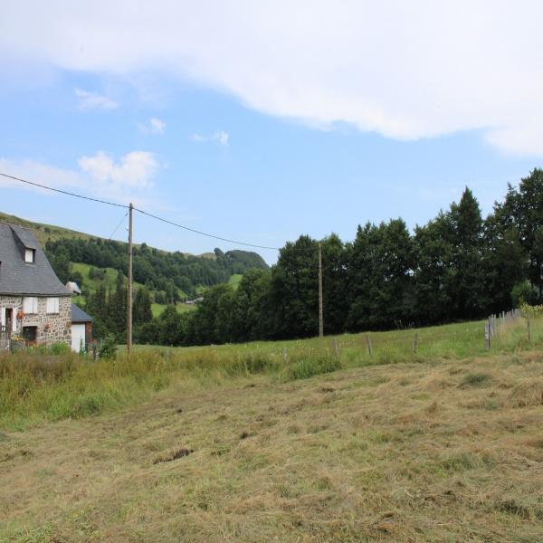 Offres de vente Terrain Le Claux 15400